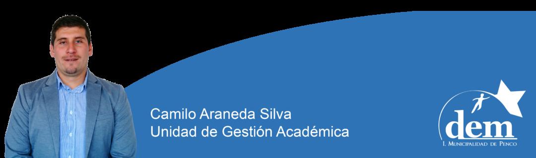 41 Camilo Araneda Silva